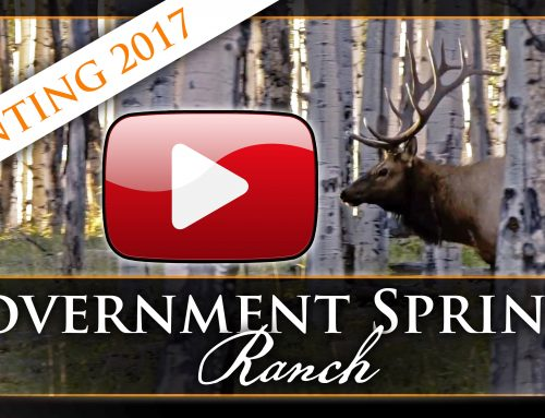 Hunting 2017 • Government Springs Ranch
