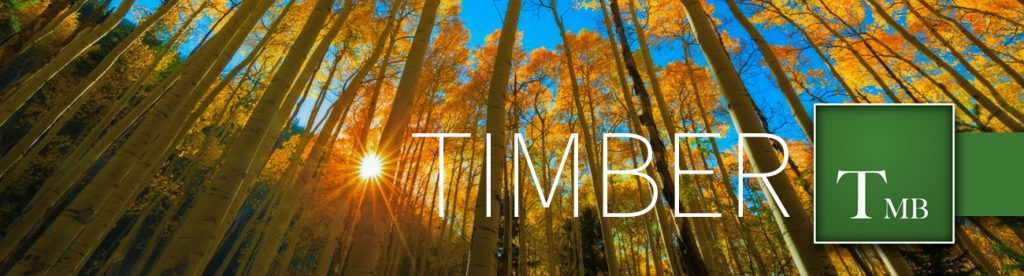 timber properties in colorado