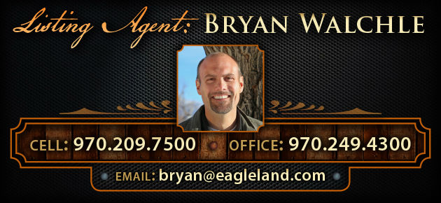 Bryan Walchle, Real Estate Agent