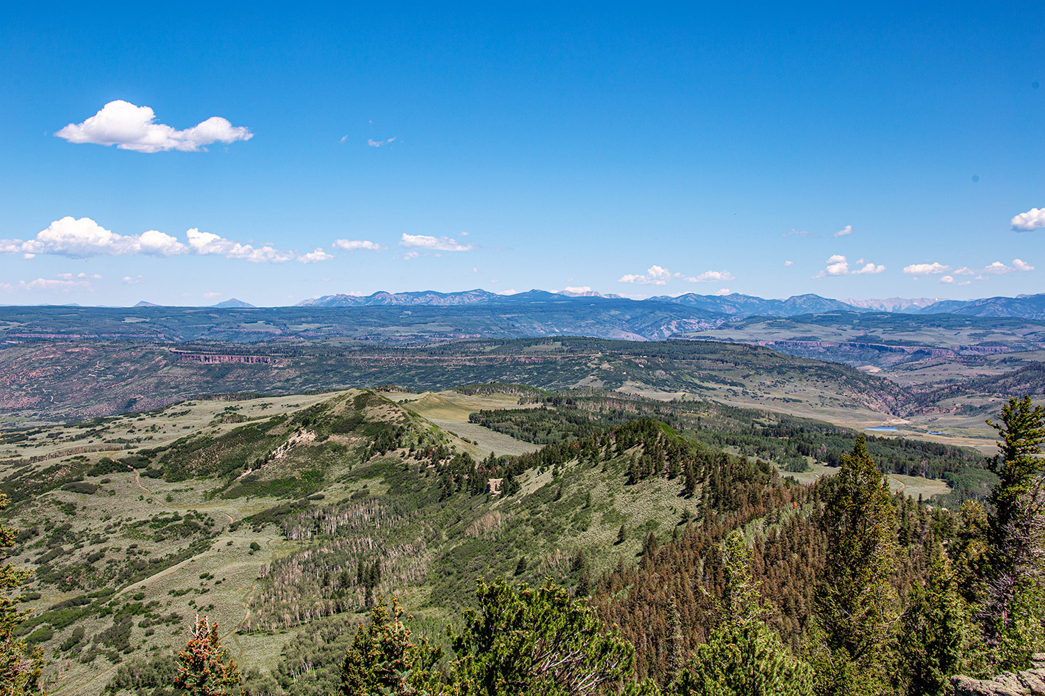 Views of the San Juan Mountains and lots of mountain property