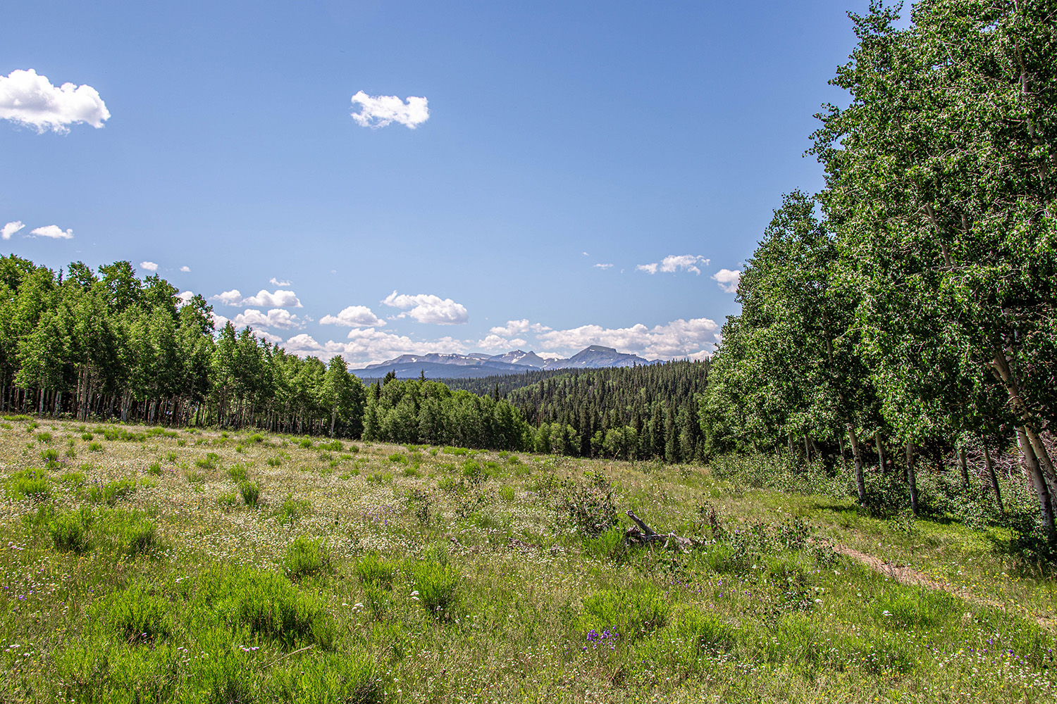 Ranch Property for sale in Colorado