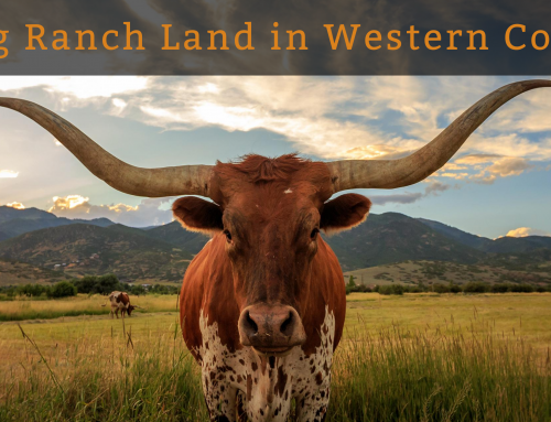 Buying Ranch Land in Western Colorado