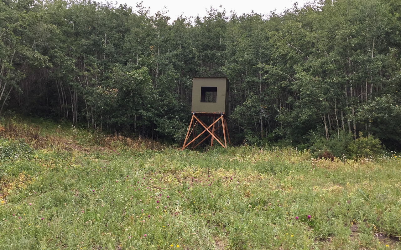 Hunting Tower on Colorado property