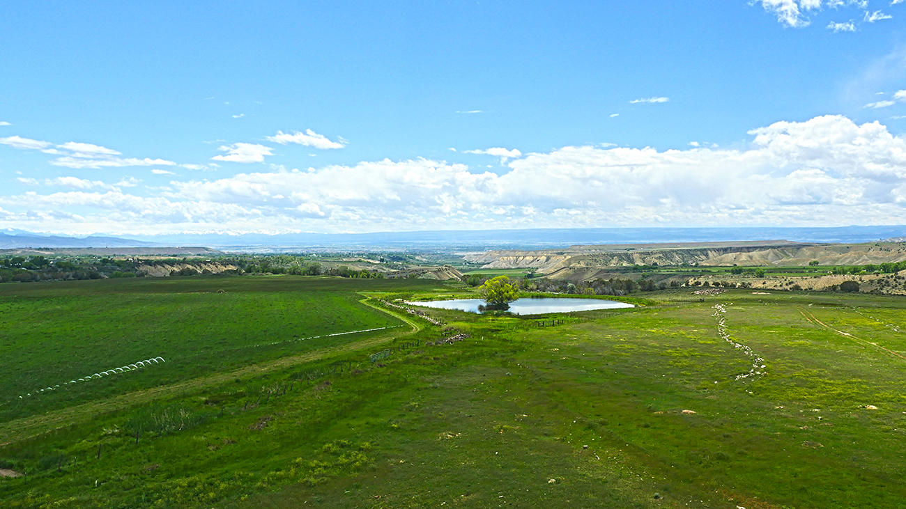 Pond and Acreage on Shadow Mesa Ranch